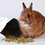 Small-Pet-Select-Rabbit-Food-Pellets-0-5