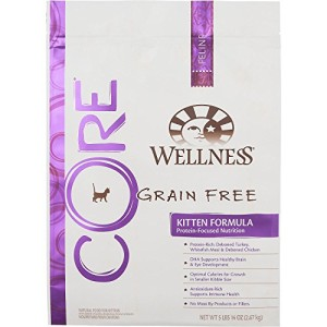 Wellness-CORE-Natural-Grain-Free-Dry-Cat-Food-0
